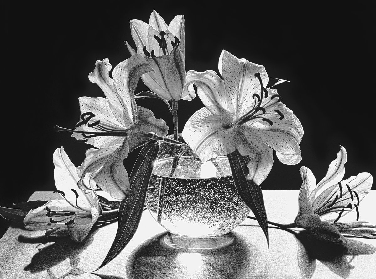 Цветы лилия открытка