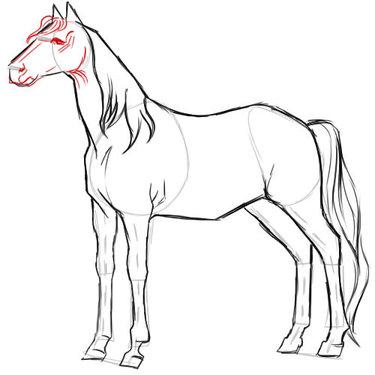 Як намалювати вовка олівцем поетапно - уроки малювання» — карточка ... 754c6d81d5e8b