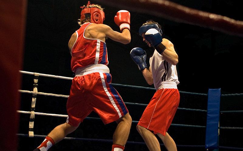 Днем, картинки для боксеров