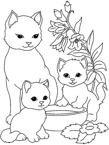 Kedi Boyama Resmi Kendin Yap Yeni Honiler El Işleri Ke Card