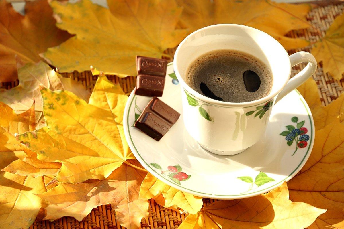 Надписями если, кофе и осень красивые картинки