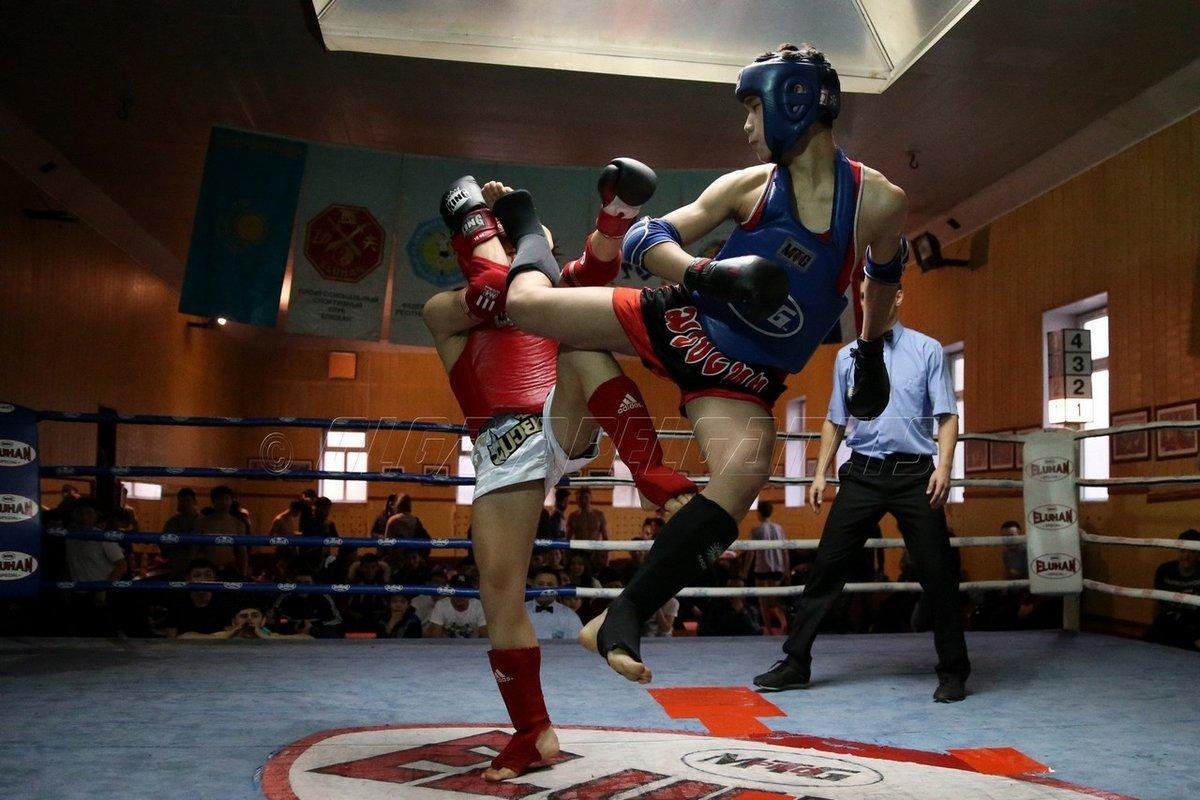 смотреть картинки тайского бокса гнома выработан
