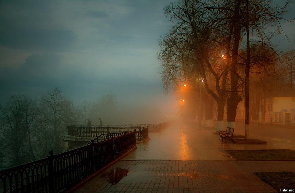 тедди, фото вечерний туман в городе машине очком