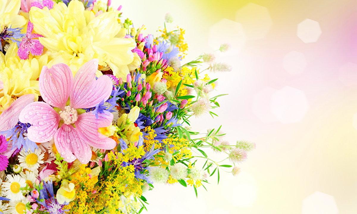 Открытки с цветами поздравлений, днем рождения
