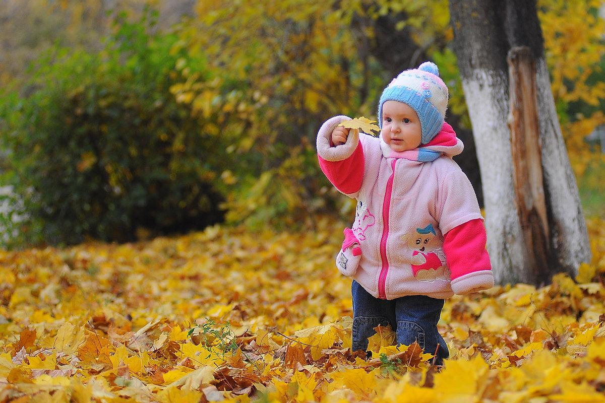 Картинки прогулки на улице детей