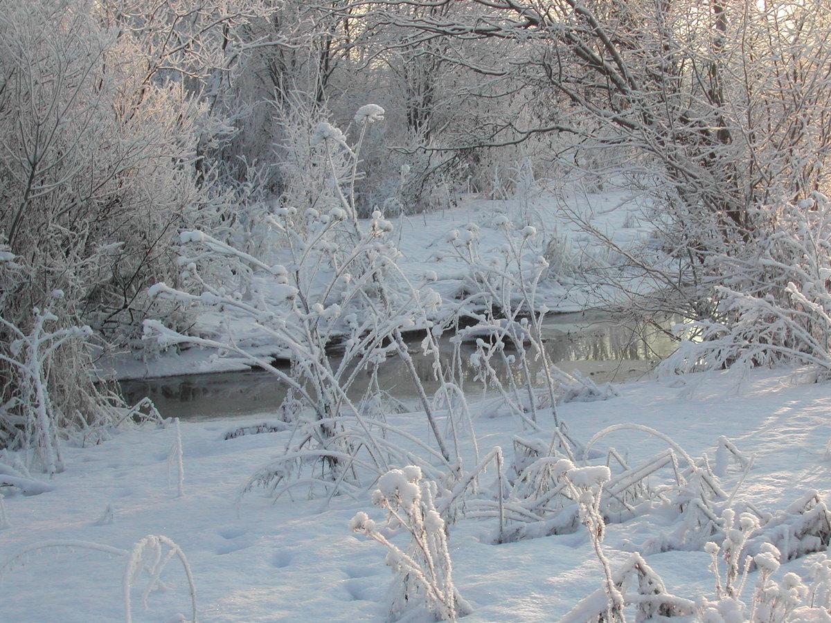 Река подо льдом картинка