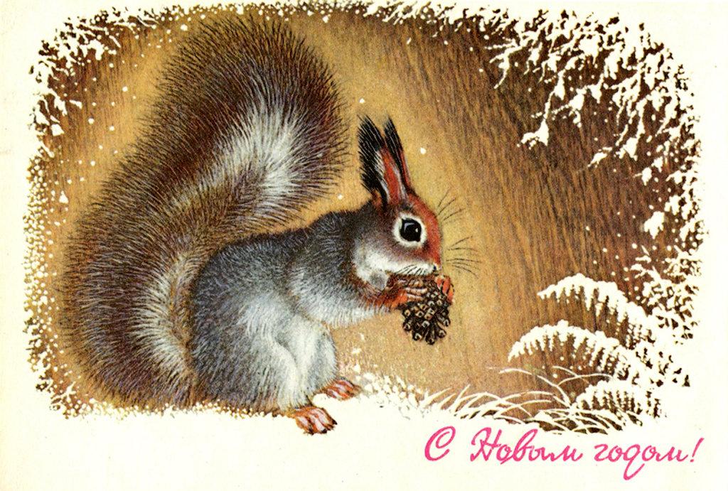 Советские открытки с белочками, поздравления дню