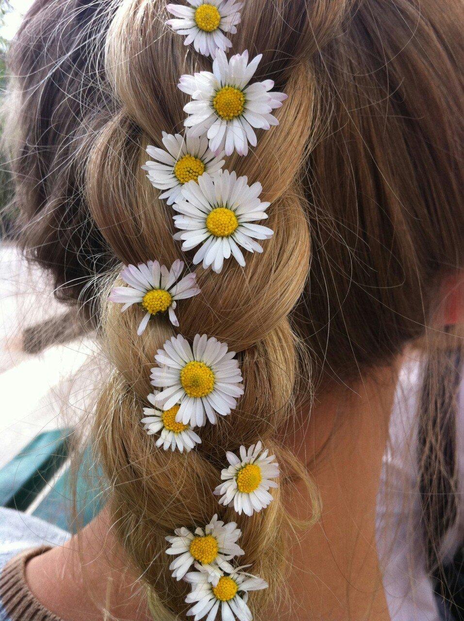 Картинки девочки с ромашкой в волосах