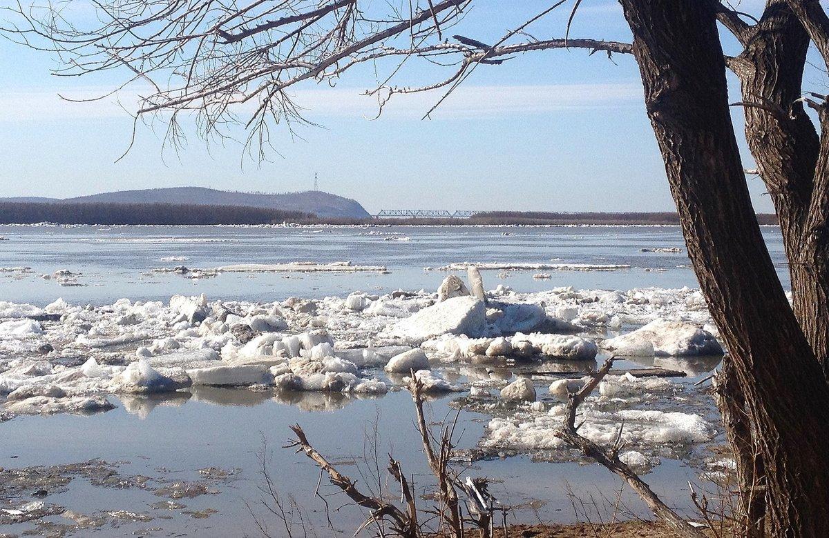 картинки весна ледоход на реке влюбленные живут