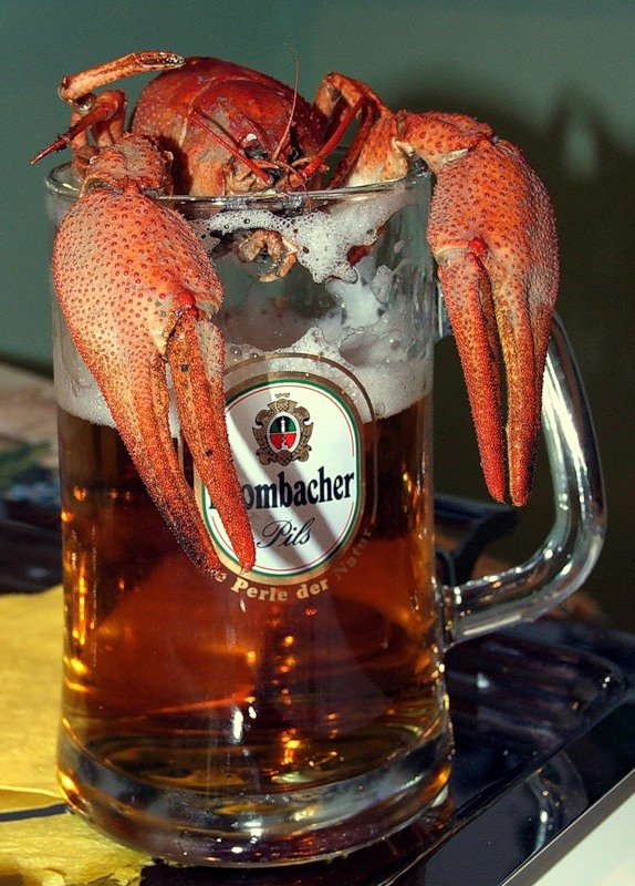 том, картинки пиво с рыбой и раками пряди намного