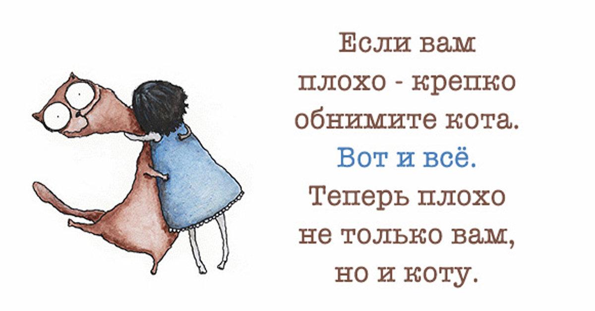 Смешные картинки для поднятия настроения подруге, открытки
