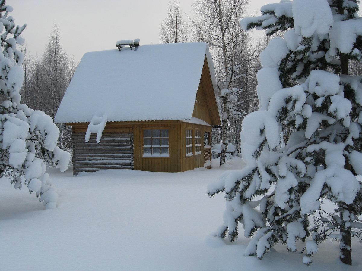 Картинки зимние дачи