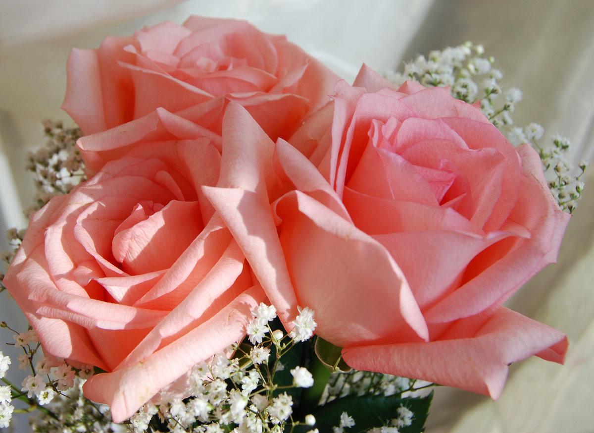 Цветов, букеты цветов для любимой женщины