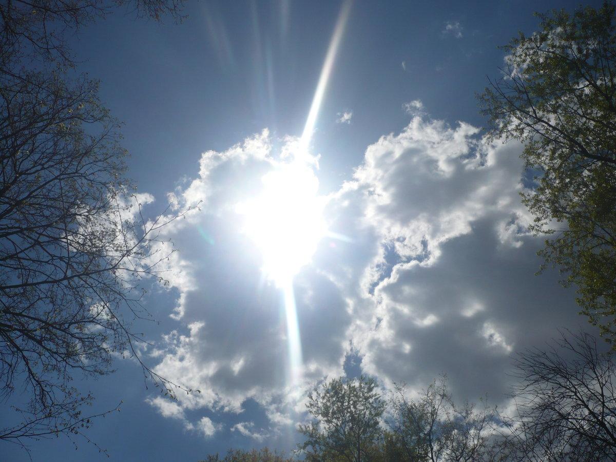 Картинка ярко светит солнце весной