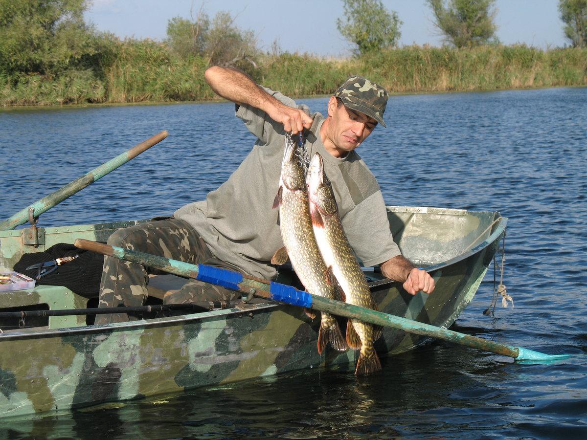 вручение золотых фото рыбы реки днепр том, как