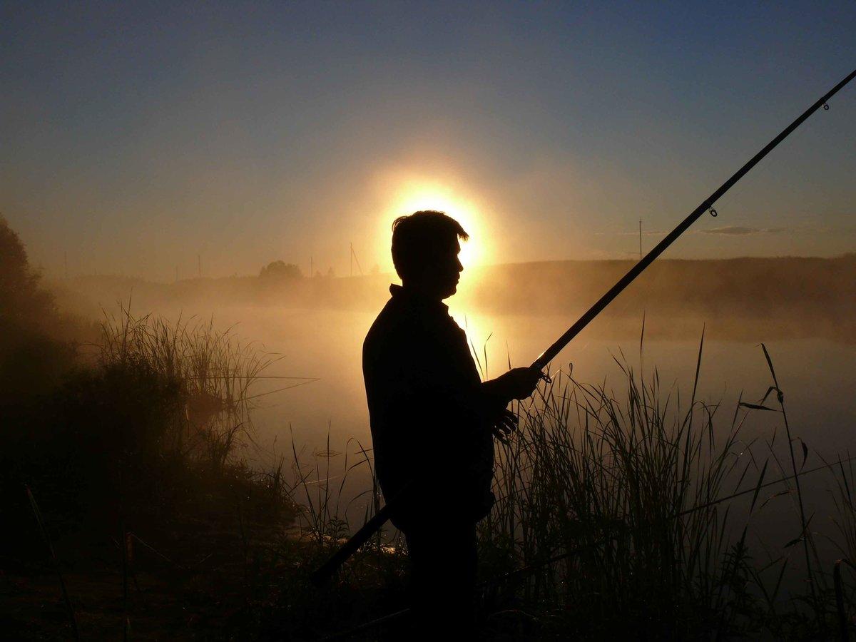 Что собирают рыбаки ночью