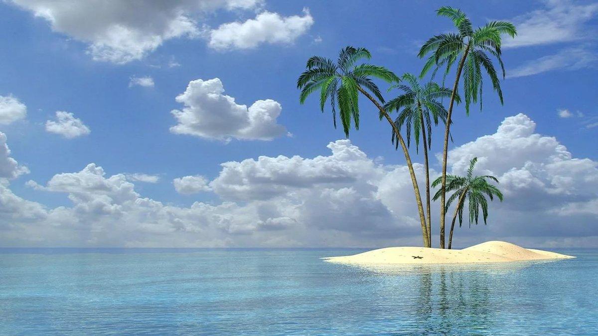 Картинка острова с пальмой