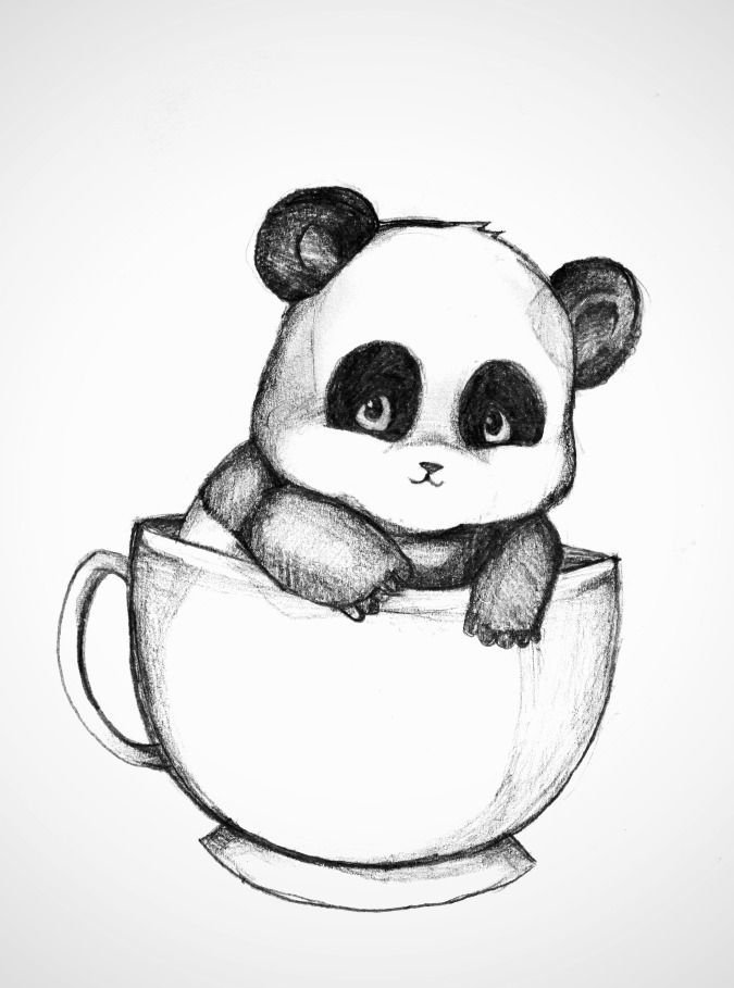 Поздравление законным, прикольные картинки для срисовки панд