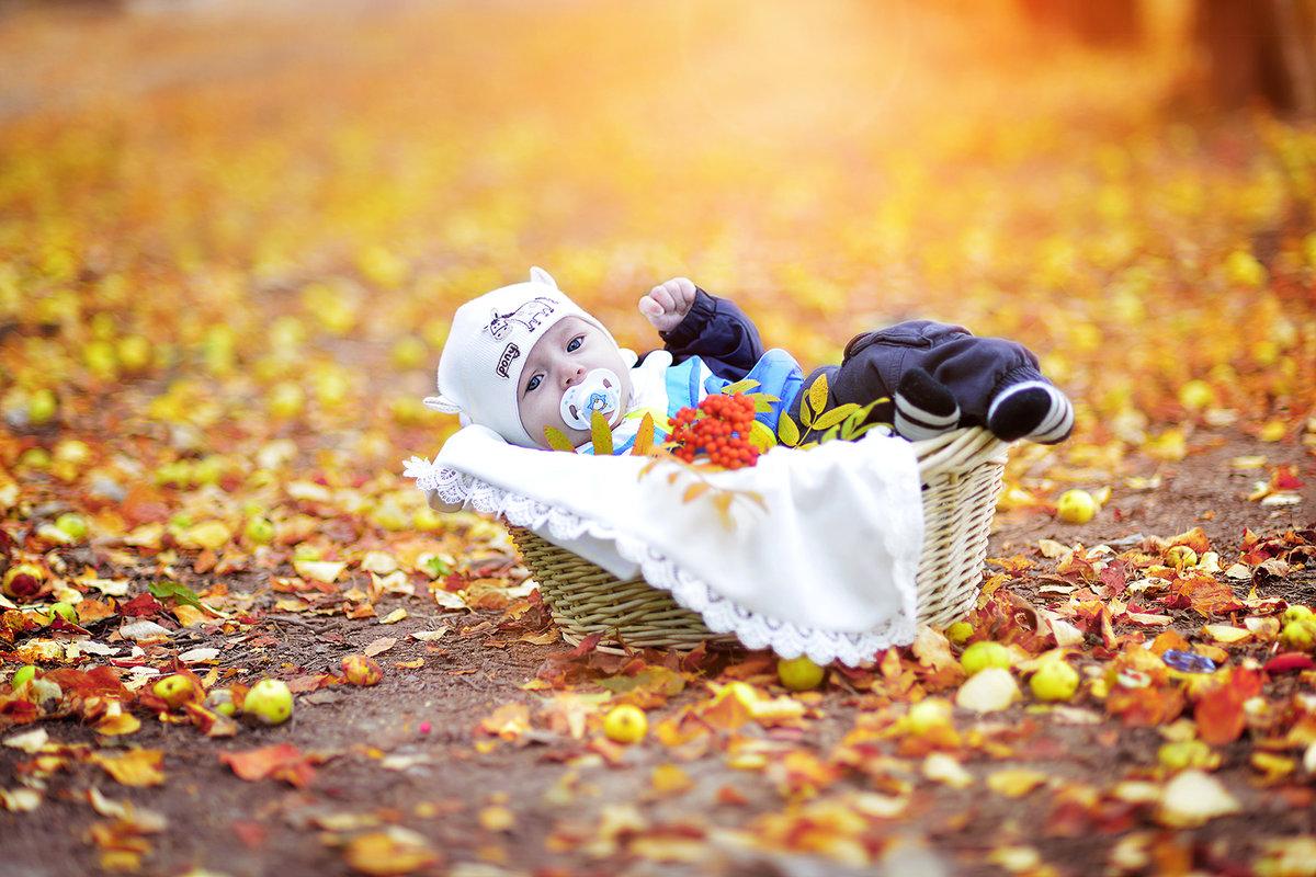 Осень и дети картинки на рабочий стол, слонику день рождения
