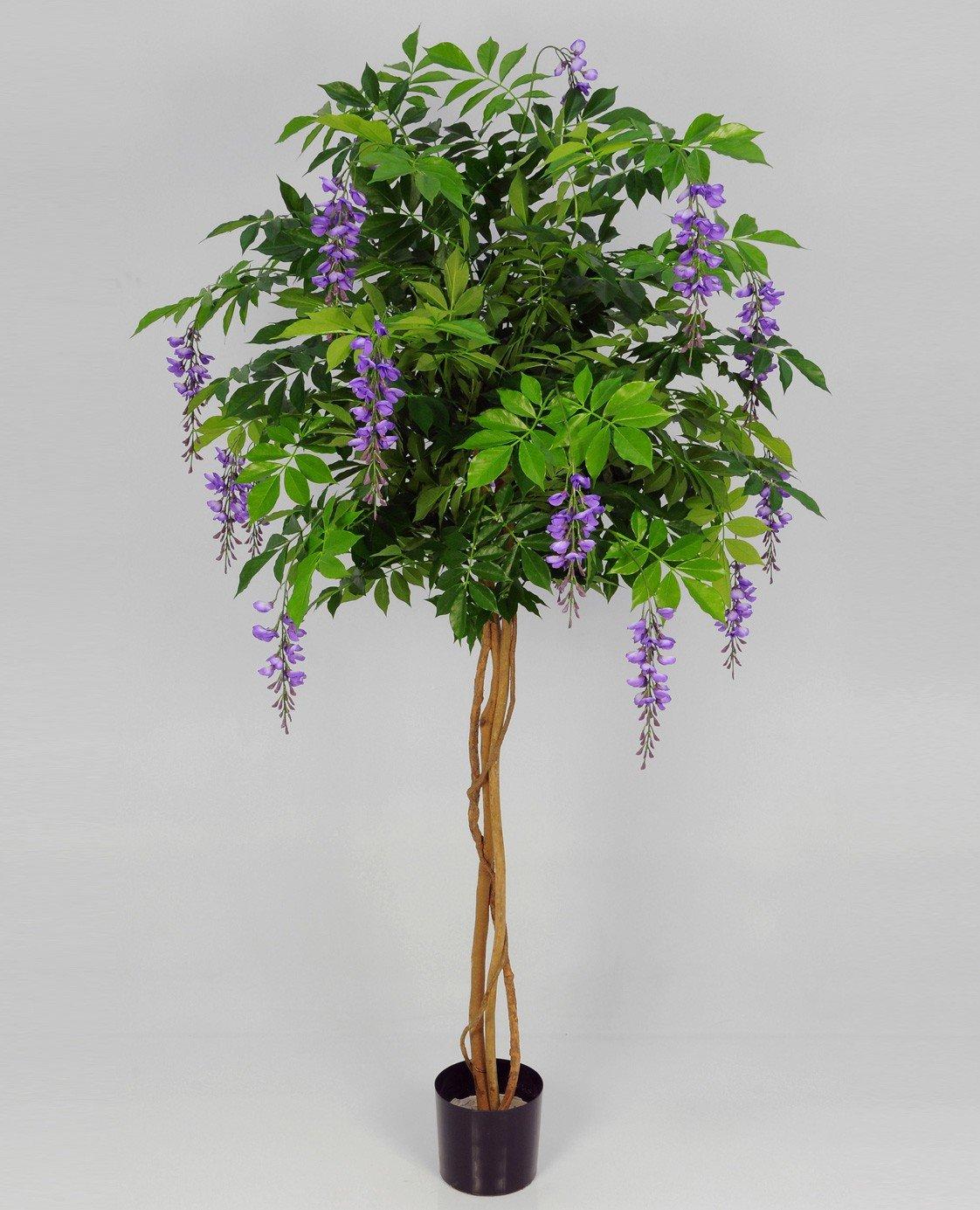 Букет подарить, магазин цветов глициния