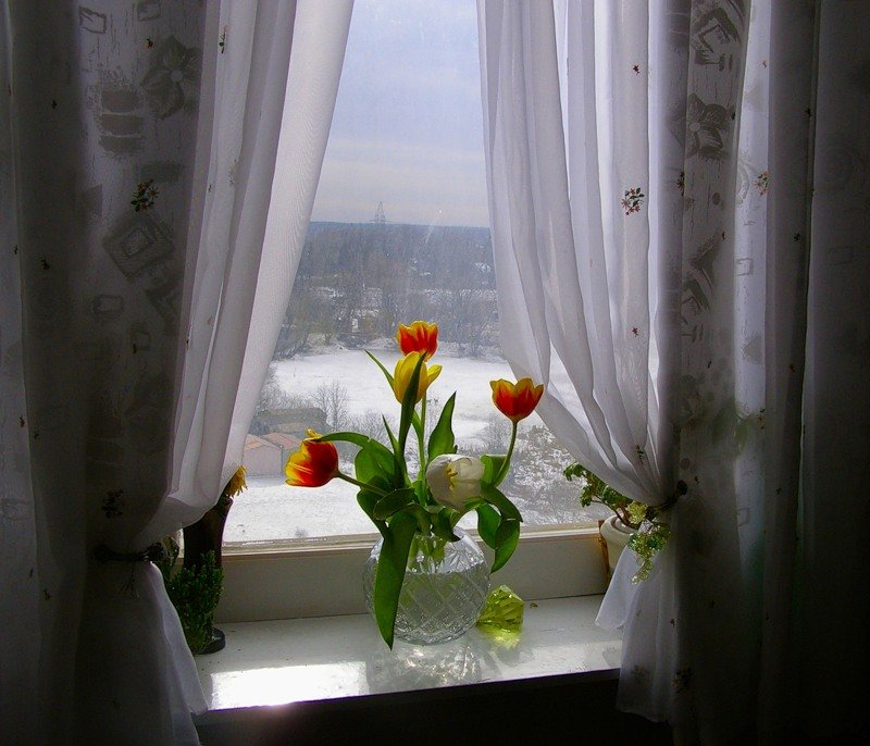 доброе утро на окне фото художественному оформлению, печать