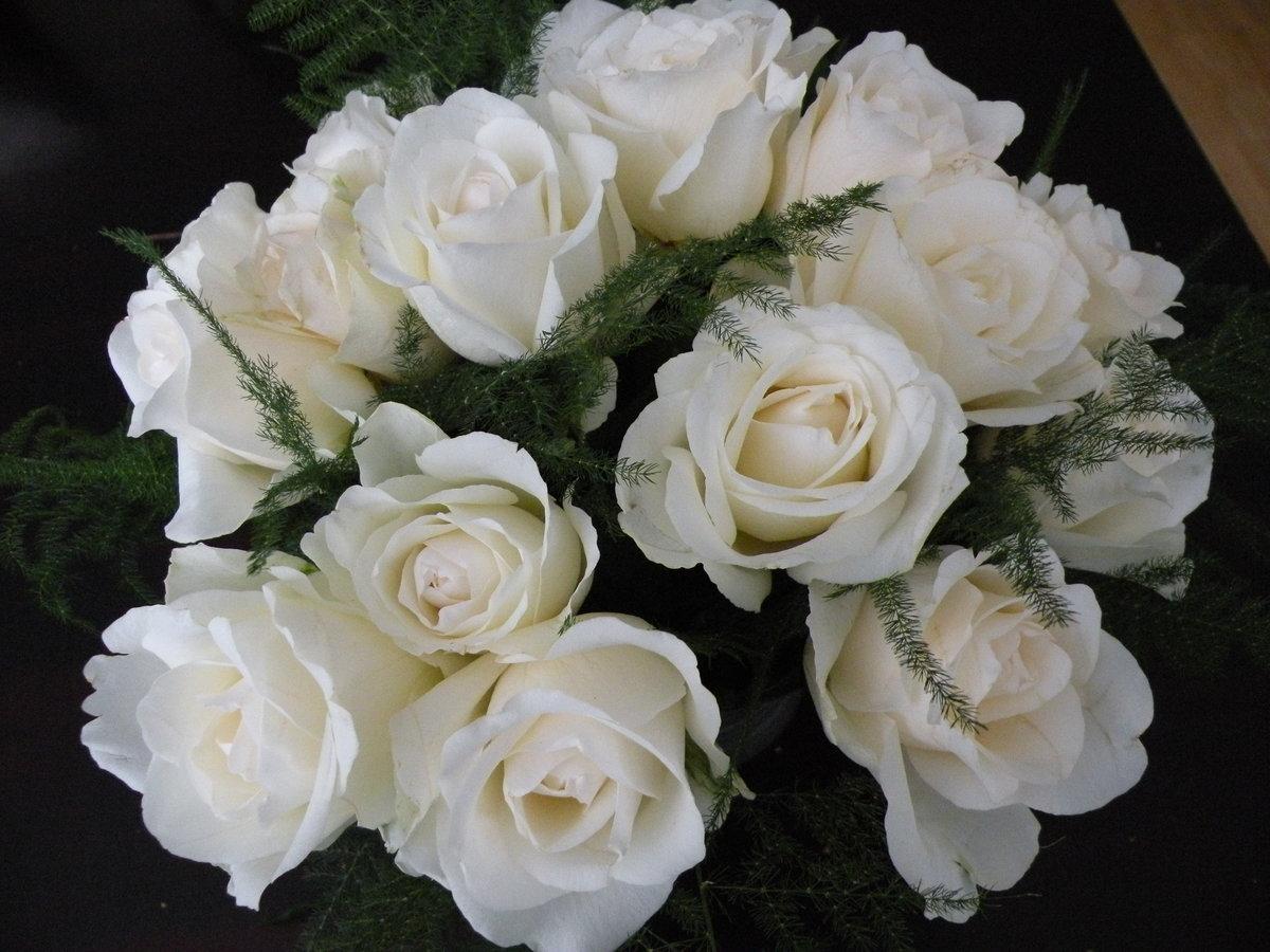 ней букеты белых роз для любимой фото менее имеется категория