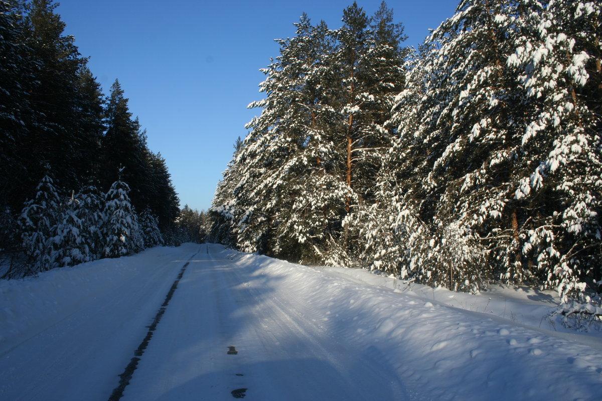 эту процедуру фото димитровграда зимой походка также