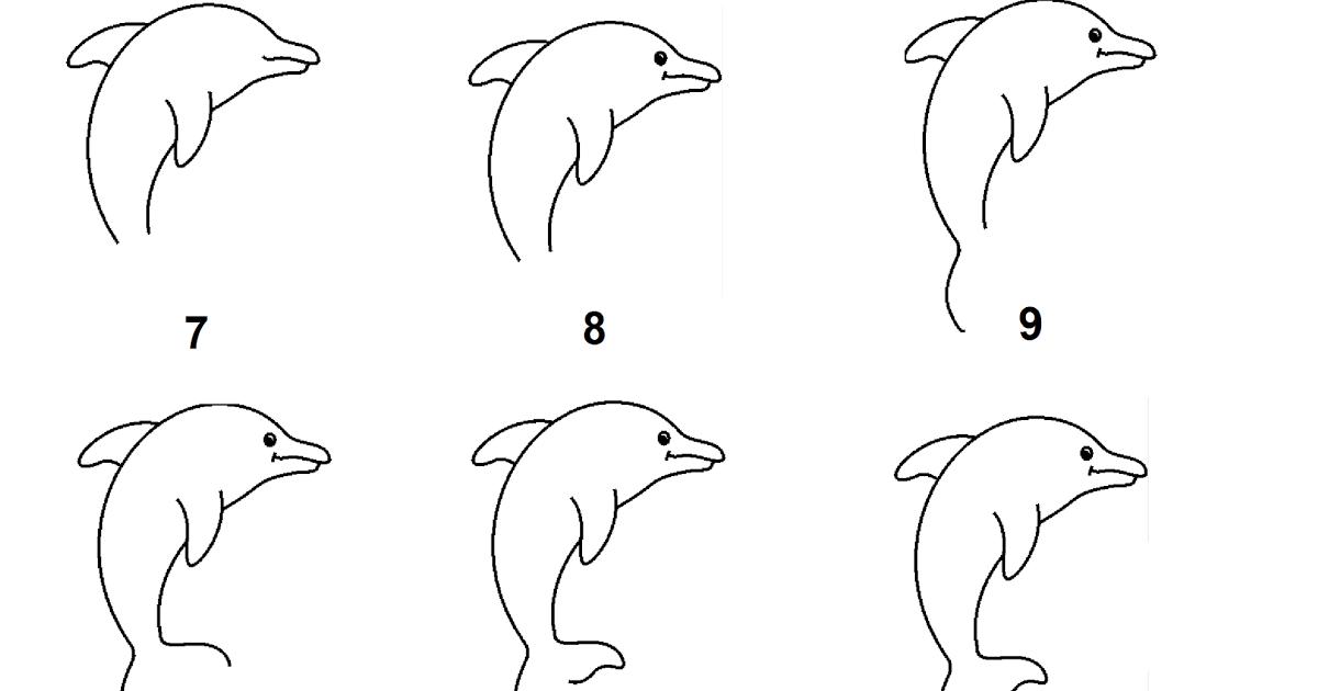 Рисунок дельфинов карандашом поэтапно