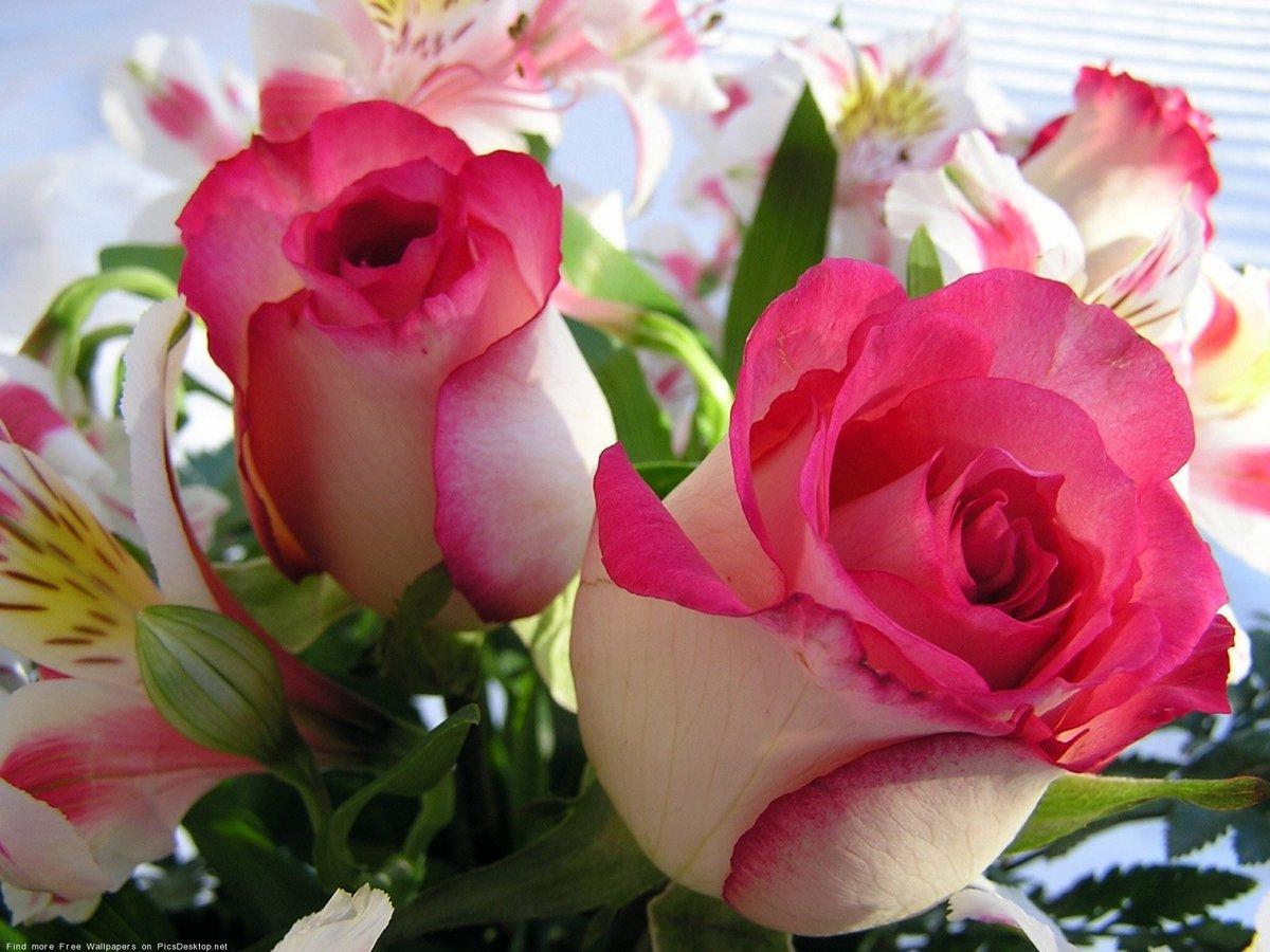 Сочетание цветов при вязании градиента 790