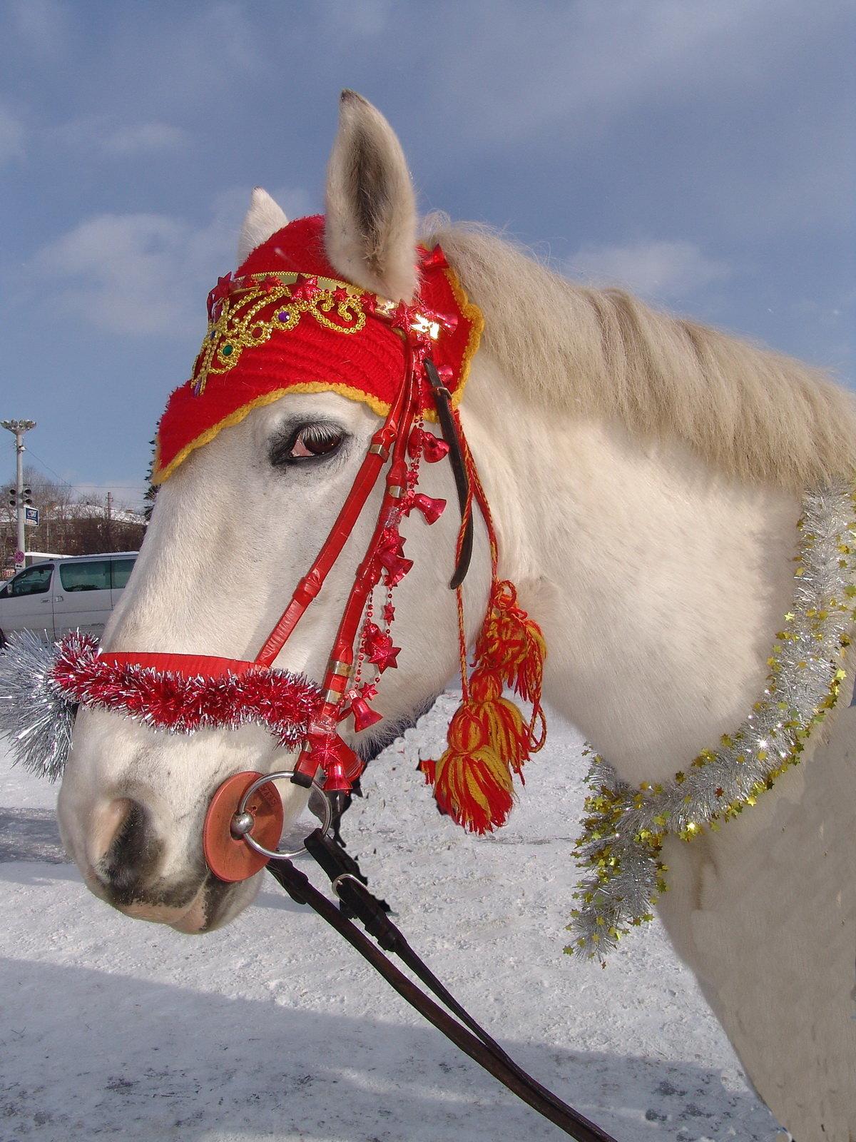 Новогодни картинки лошади