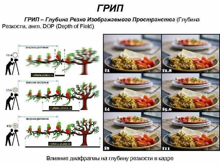 от чего зависит грип в фотографии доказать