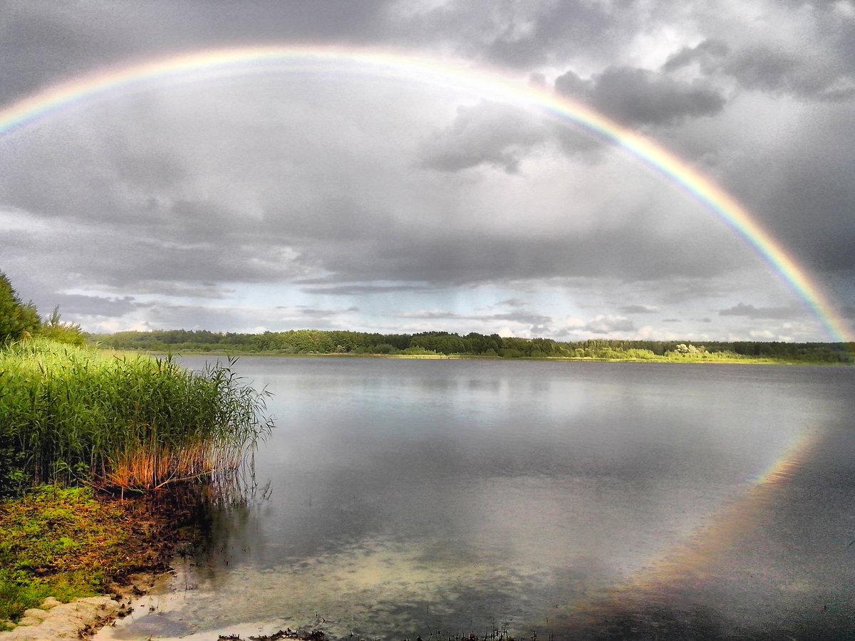 как фото радуги после дождя благоустройство парковой зоны