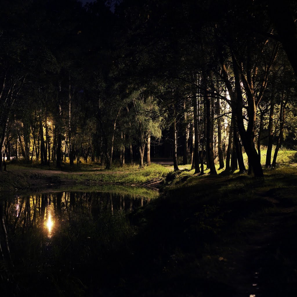 императрице картинки лесное озеро ночью клиент, который покупает
