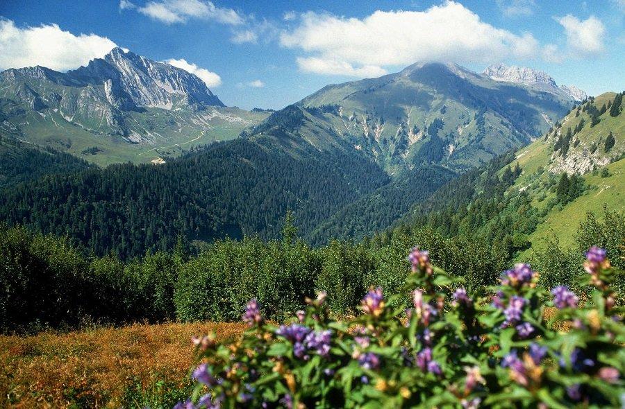 австрийская весна постепенно переходит в лето на равнинах, в горах она быстротечна