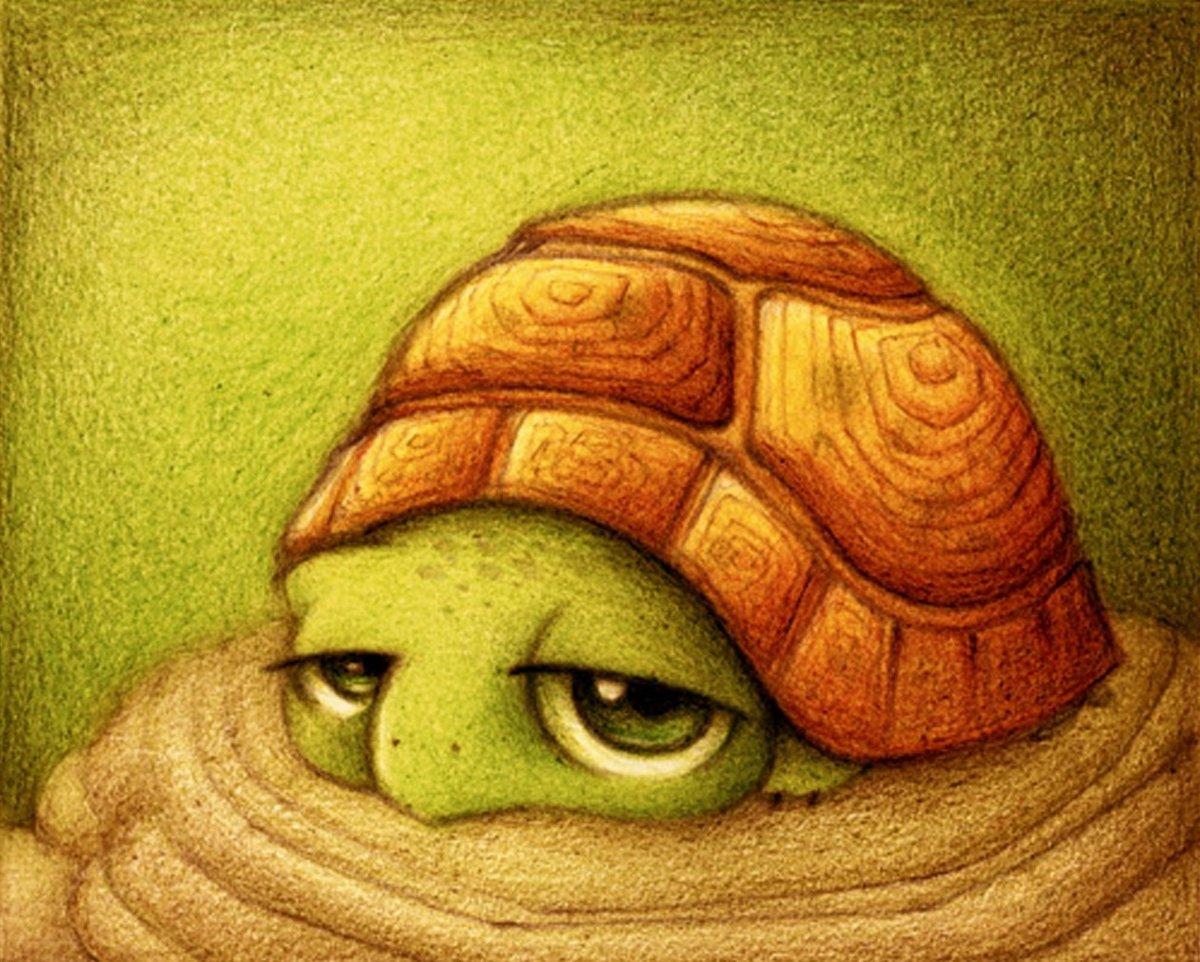 Смешная черепаха рисунок