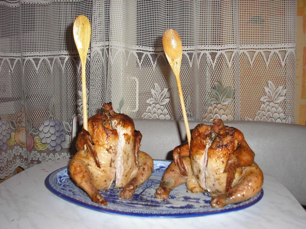 Картинки, смешные картинки куриц гриль