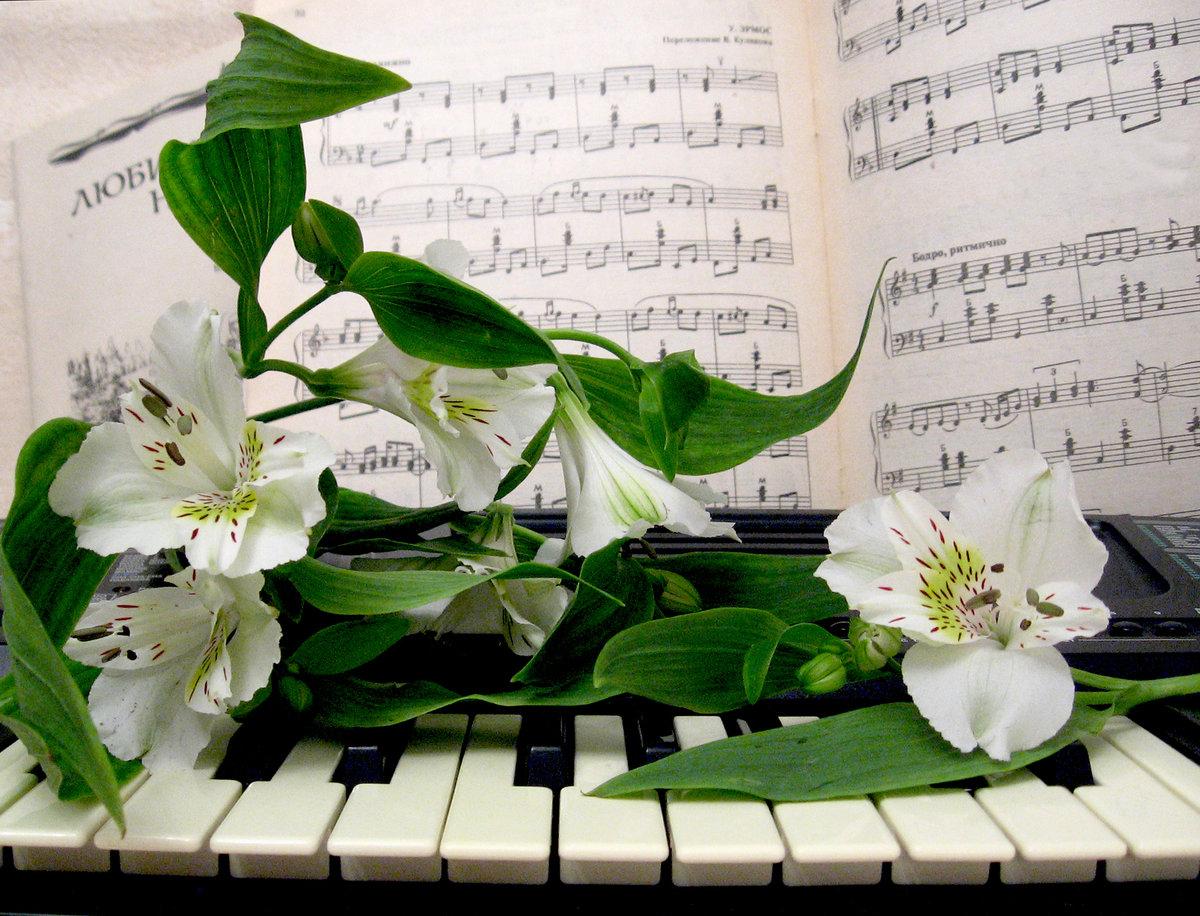 Музыка поздравительная открытка