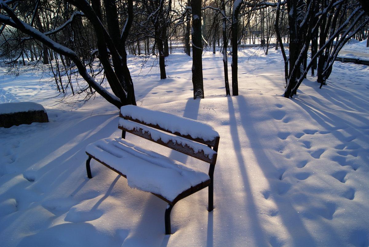 скамейка под снегом картинки из-за неприятного