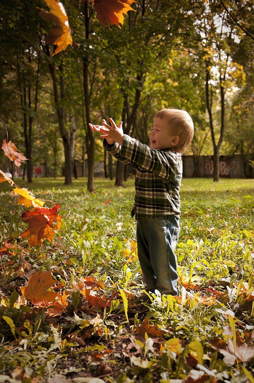 Открытка поздравление, картинки осень дети листья
