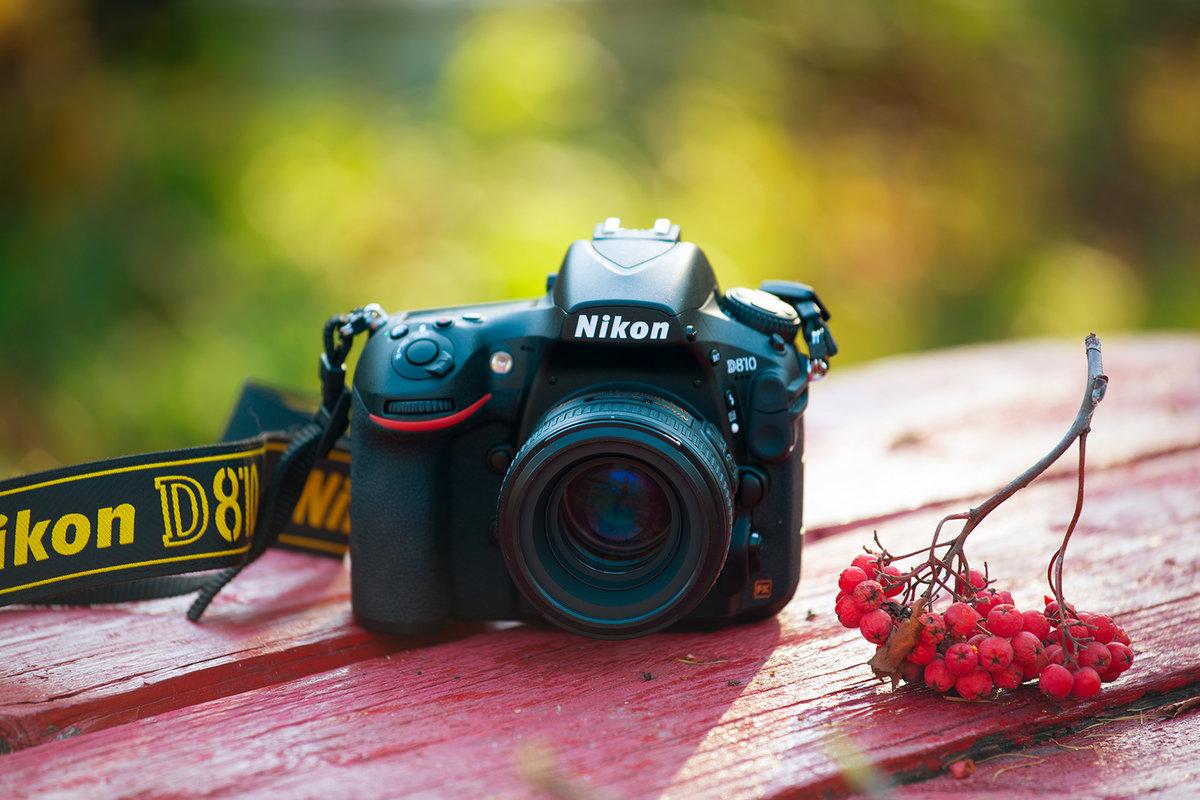 фотоаппарат для размытого фона буйство красок заднем