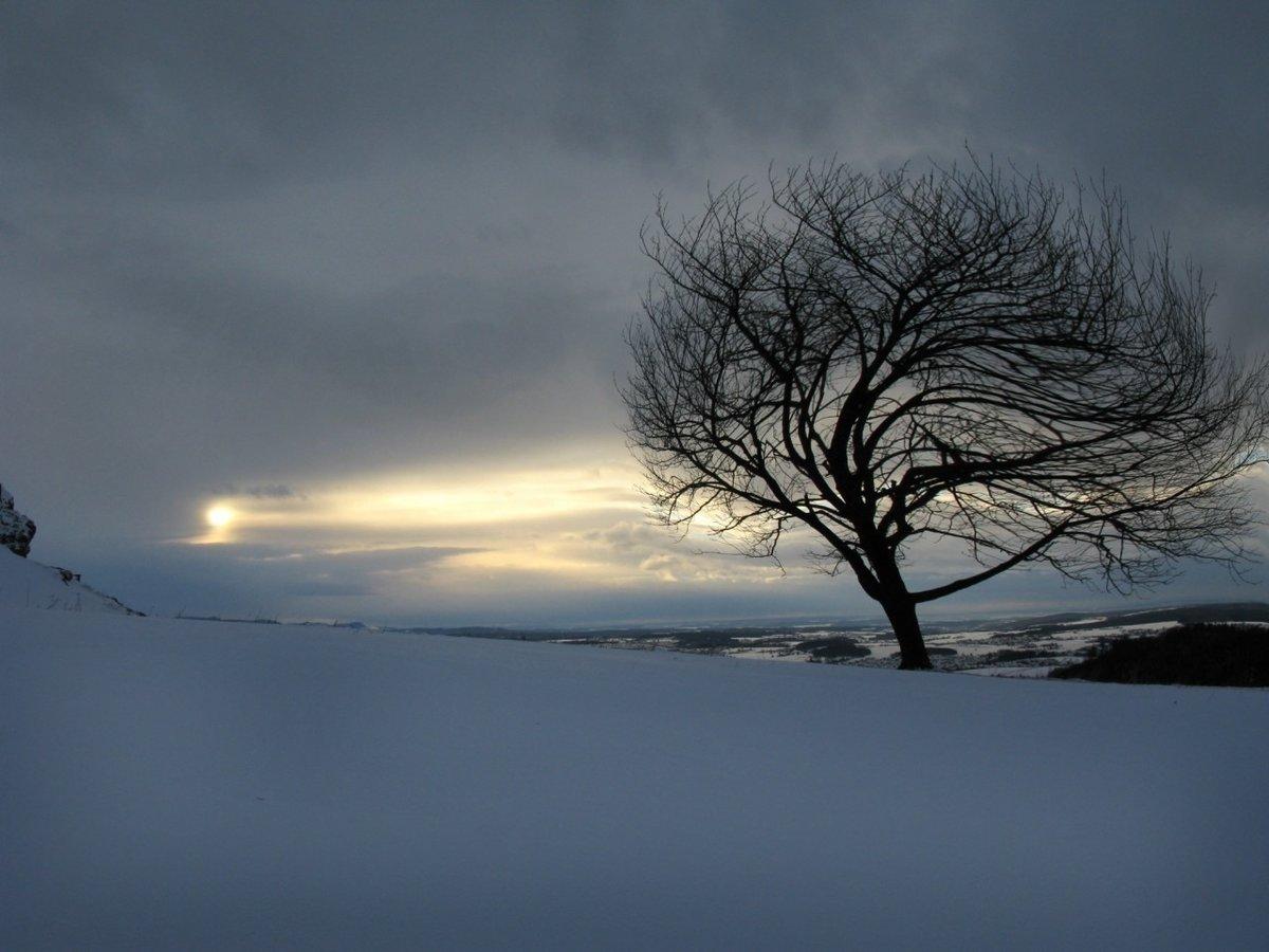 дистанция картинки ветреной погоды зимой необходимая информация любом