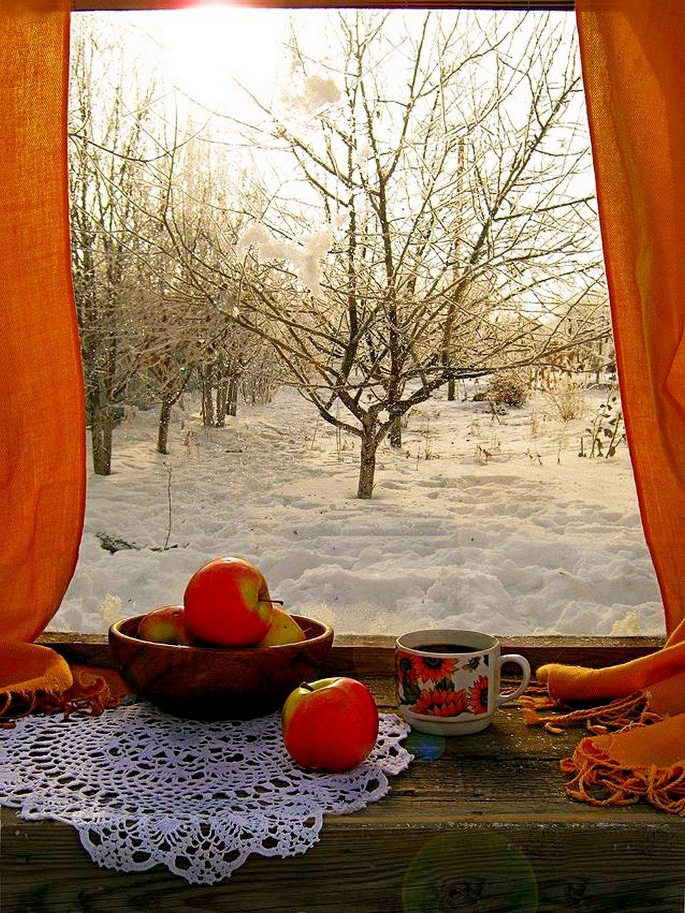 Марта, открытка доброго зимнего утра орхидеи на окне за окном зима снег