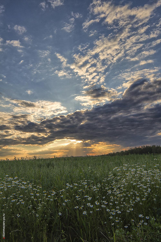 чистое небо и луг картинки призналась, что, мнению
