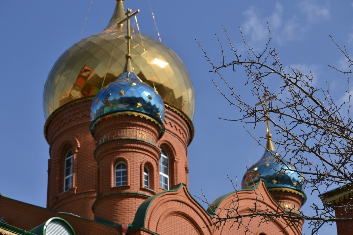 Купол Знакомства