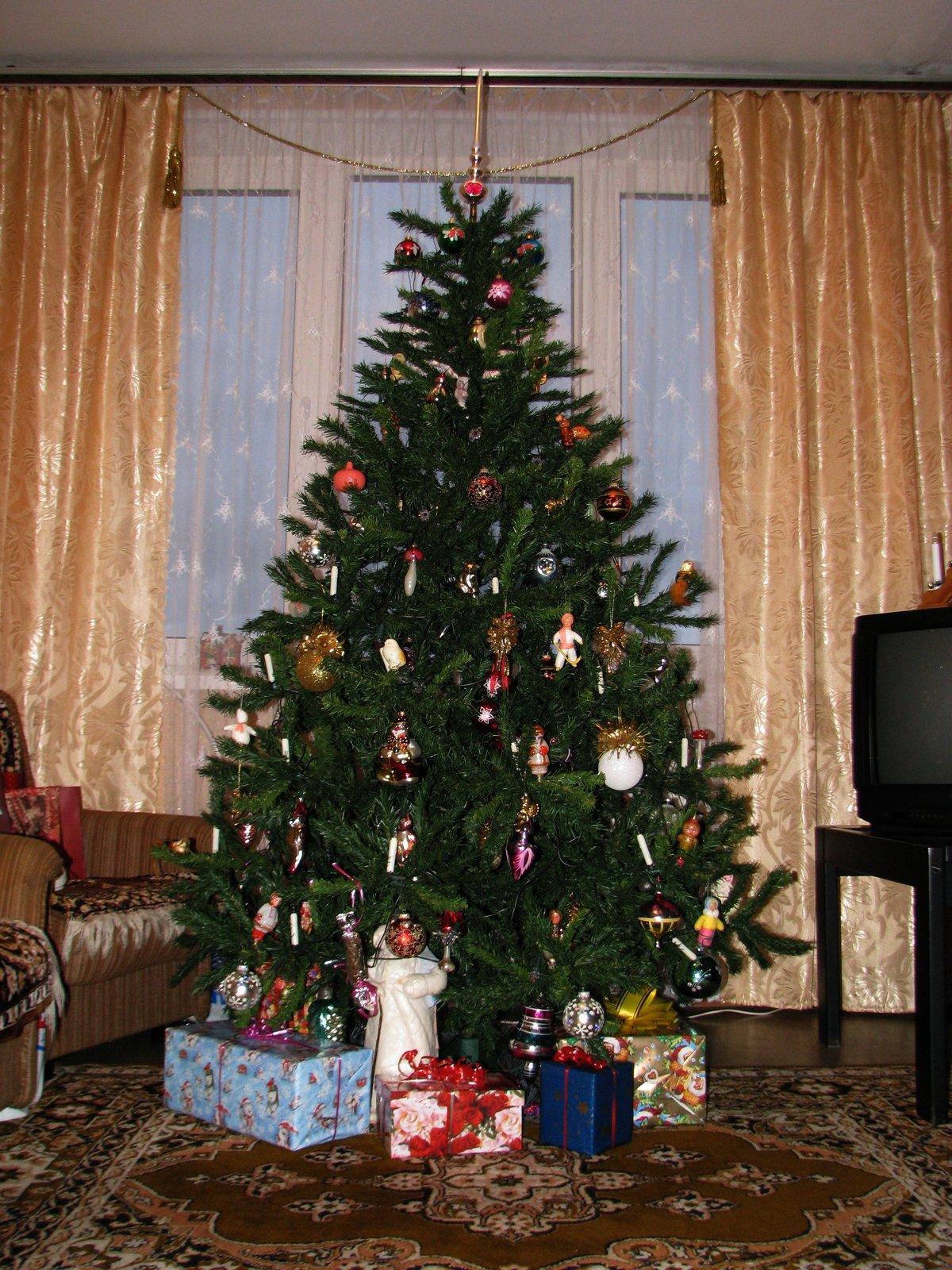 смотреть фото елка дома тут куда более