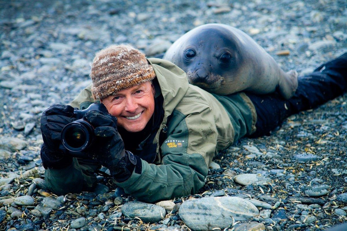 Картинки с тюленем в соц сетях