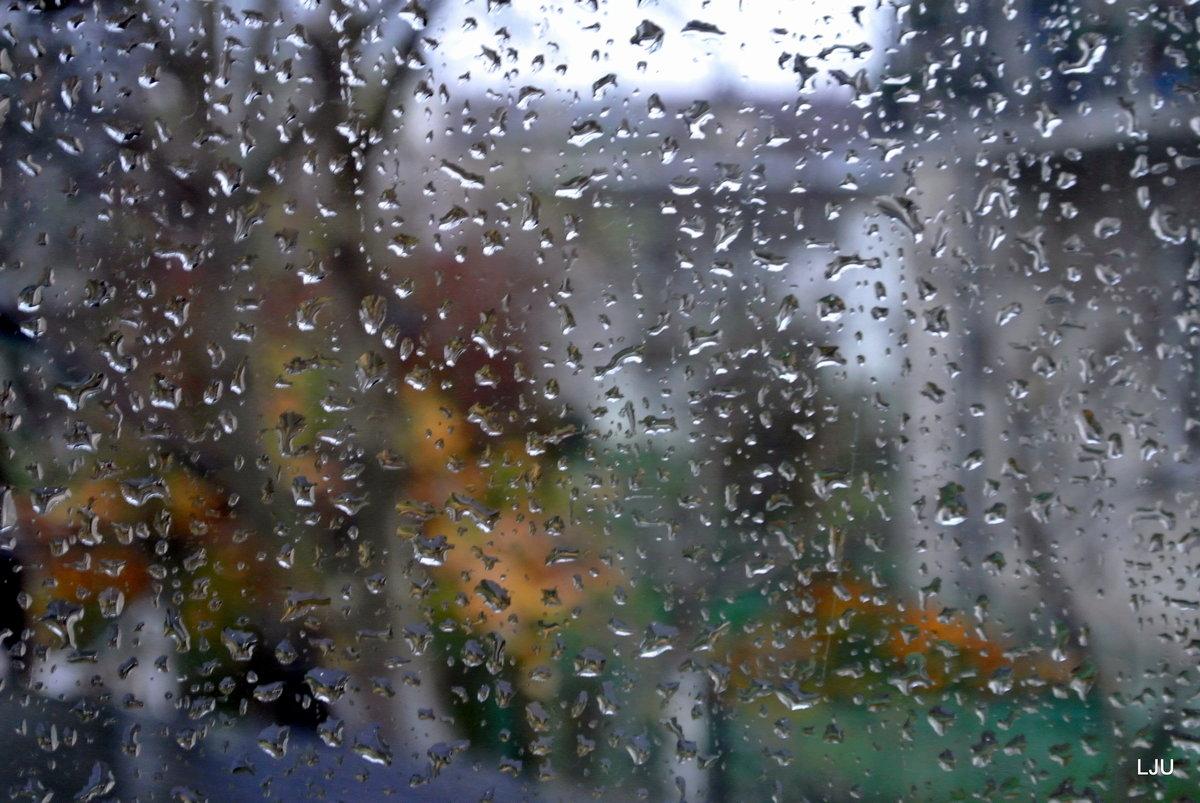 Прикольно февраля, картинки с дождем за окном