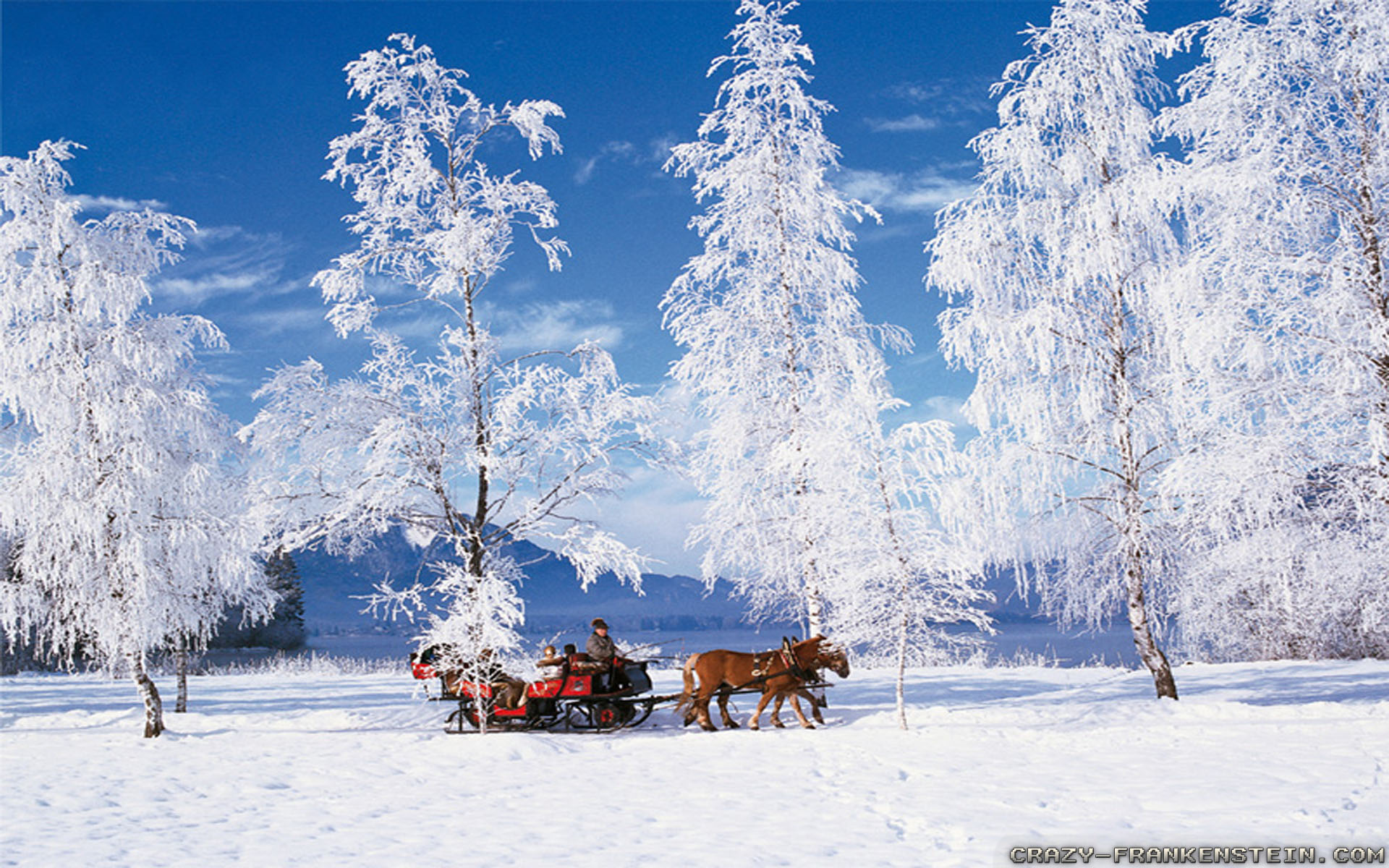winter scenes images image collections wallpaper and free card