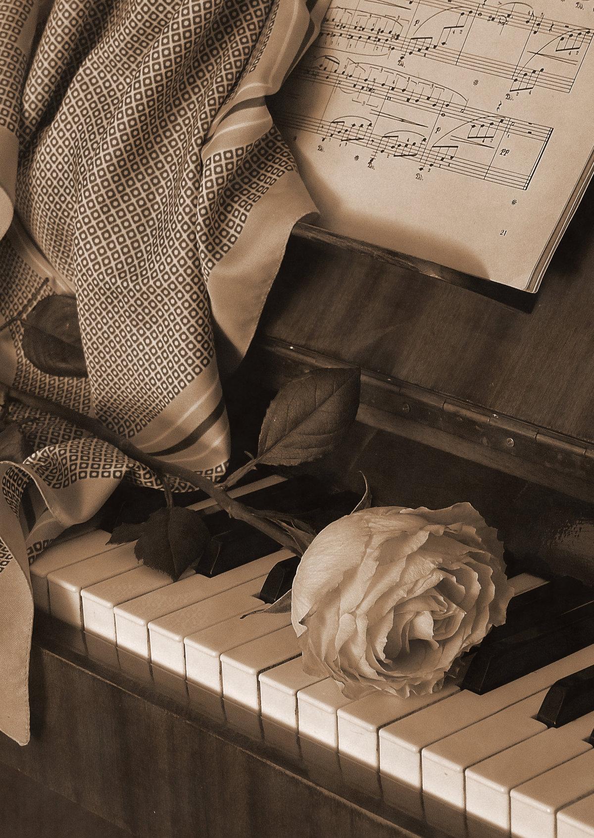 случай, красивые картинки фортепиано ноты видео обучение лучше