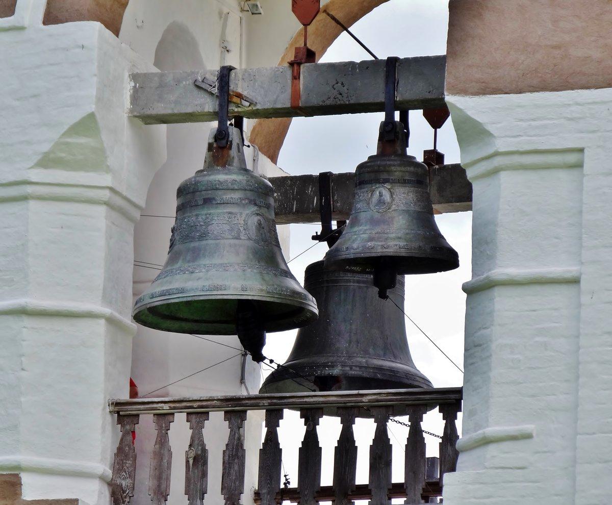 фотография картинки малого колокола веков корова является